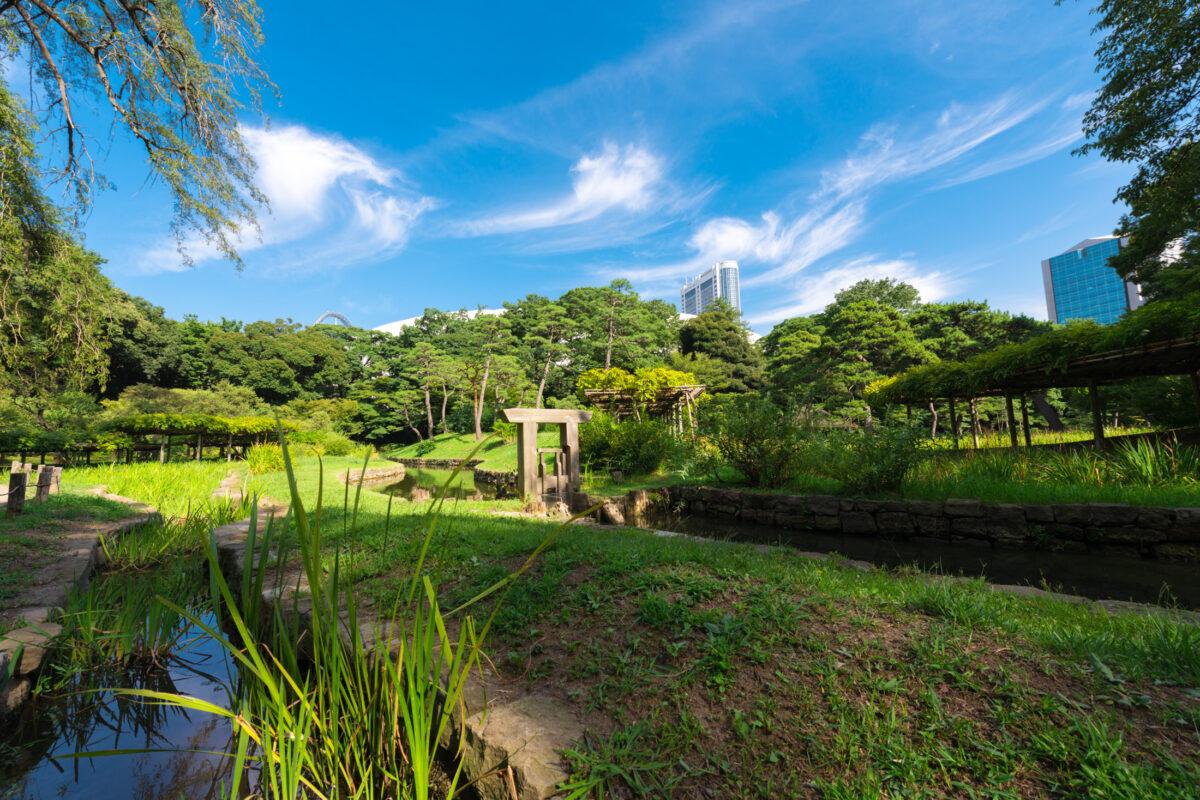 Koishikawa Korakuen Pond