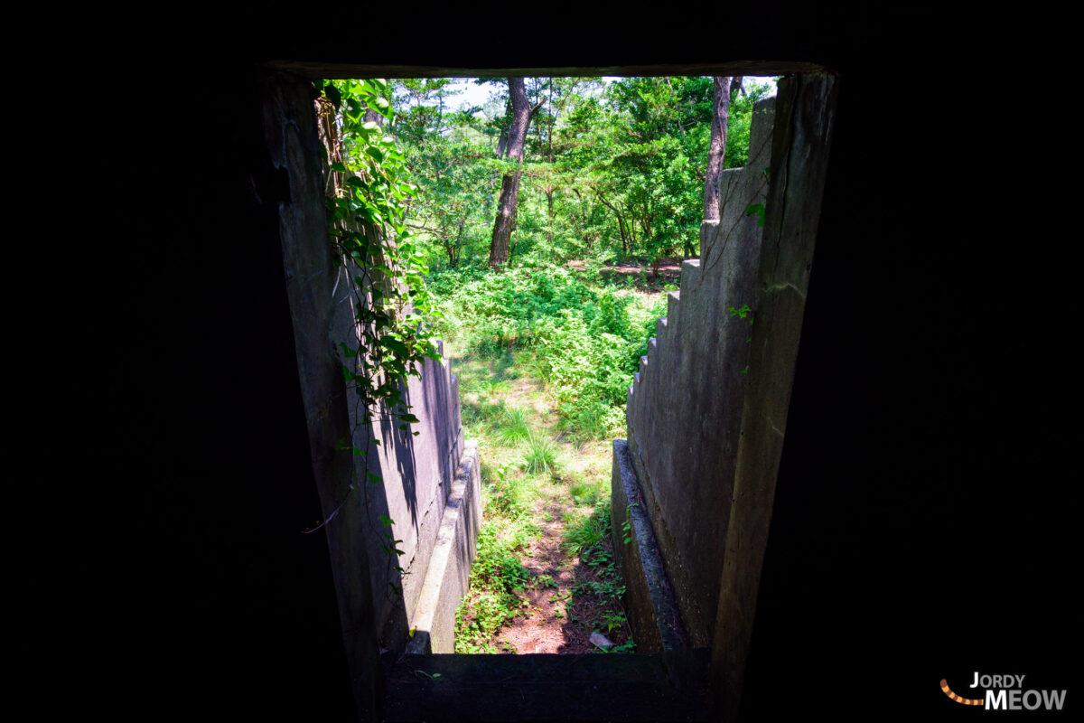 abandoned, chiba, haikyo, japan, japanese, kanto, ruin, urban exploration, urbex