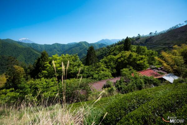 abandoned, asia, chubu, haikyo, japan, japanese, mount-fuji, ruin, urban exploration, urbex, village, yamanashi
